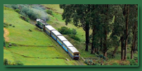 ooty tour